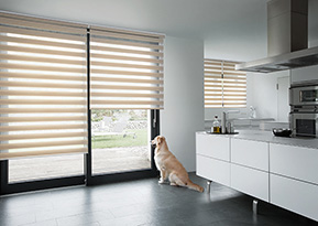 roller blinds feature 1