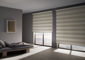 roller blinds feature
